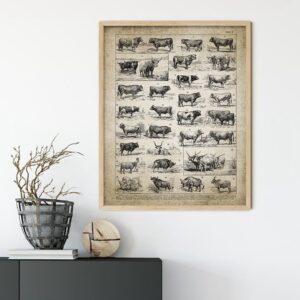 Quadro vintage animais